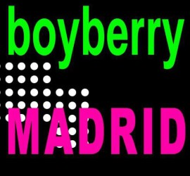 boyberry